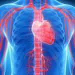 Какие сосудорасширяющие препараты принимают при гипертонии
