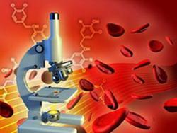 Как читать биохимический анализ крови