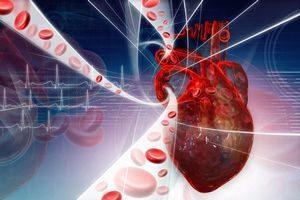Осложнения после стентирования коронарных сосудов сердца. Что должен выполнить пациент перед коронарографией? Прием препаратов после стентирования.